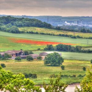 Cuxton_Ranscombe Farm_Kent_turystyka